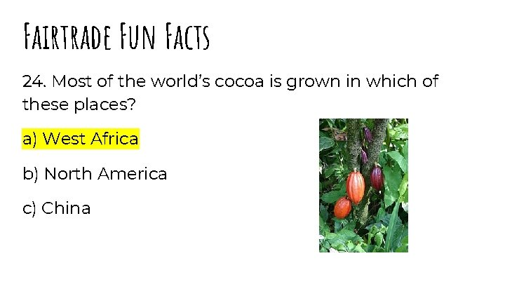 Fairtrade Fun Facts 24. Most of the world's cocoa is grown in which of