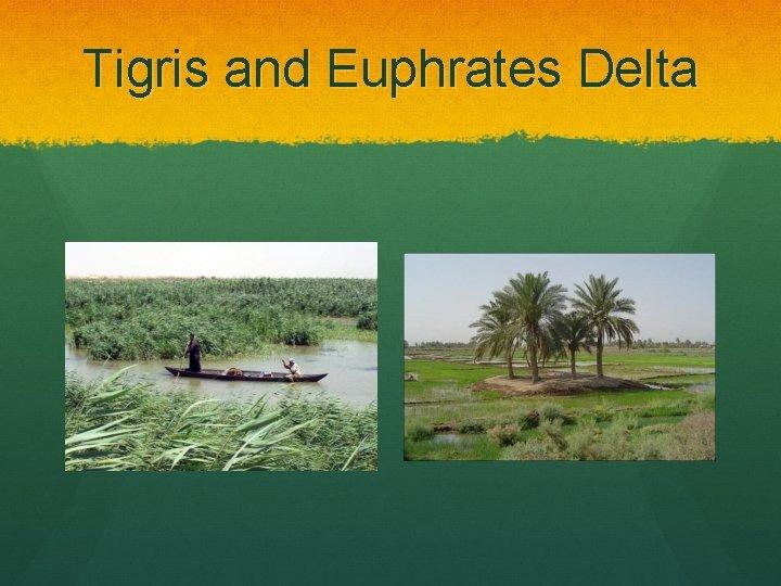 Tigris and Euphrates Delta