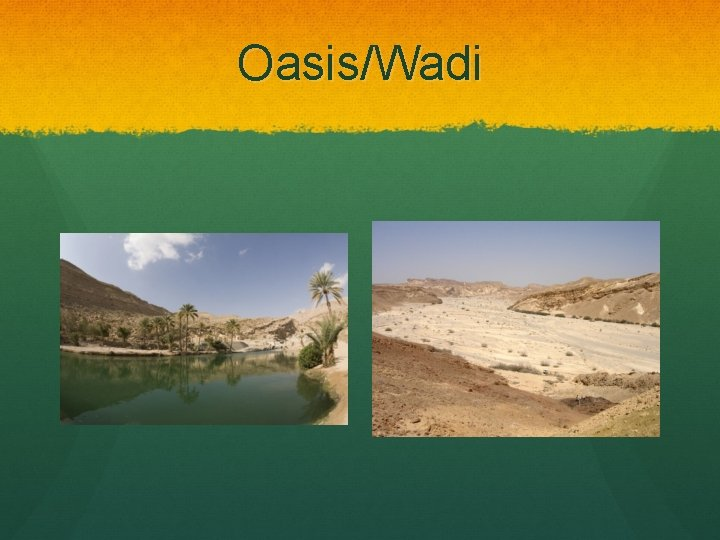 Oasis/Wadi
