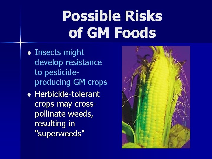Possible Risks of GM Foods t t Insects might develop resistance to pesticideproducing GM