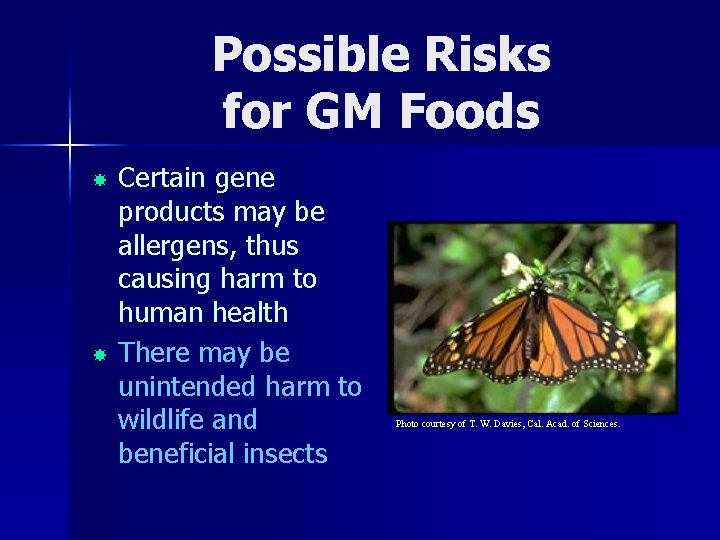 Possible Risks for GM Foods Certain gene products may be allergens, thus causing harm