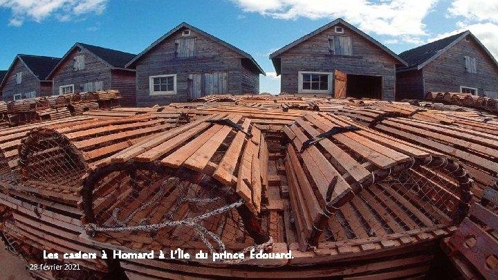 Les casiers à Homard à L'Île du prince Édouard. 28 février 2021
