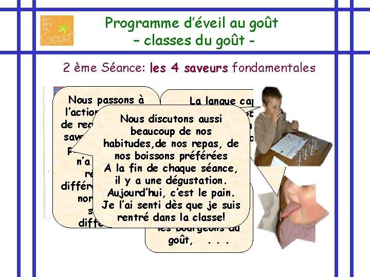 Programme d'éveil au goût – classes du goût 2 ème Séance: les 4 saveurs