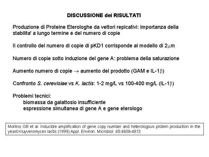 DISCUSSIONE dei RISULTATI Produzione di Proteine Eterologhe da vettori repicativi: importanza della stabilita' a