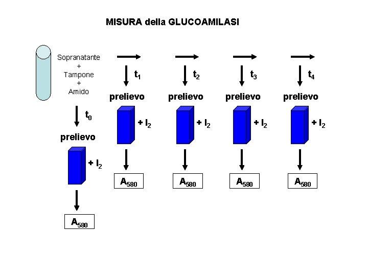 MISURA della GLUCOAMILASI Sopranatante + Tampone + Amido t 1 prelievo t 0 t