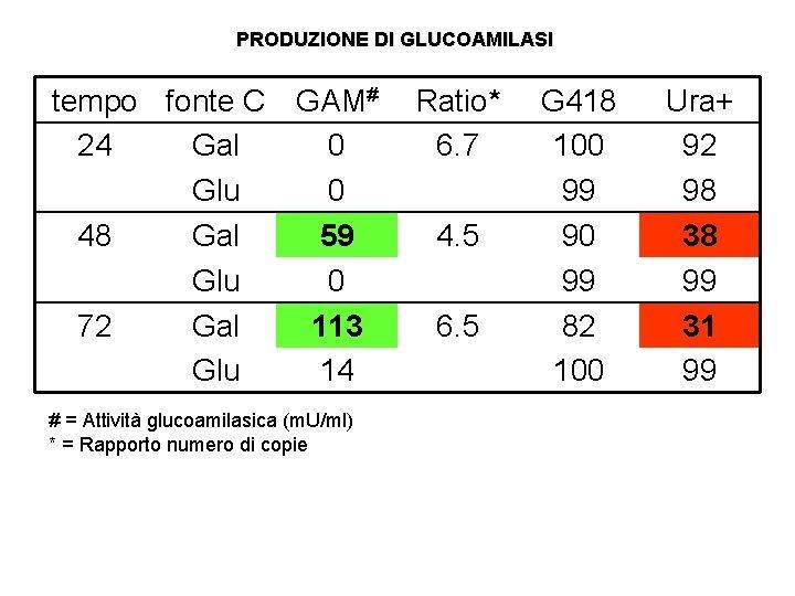 PRODUZIONE DI GLUCOAMILASI tempo fonte C GAM# 24 Gal 0 Glu 0 48 Gal