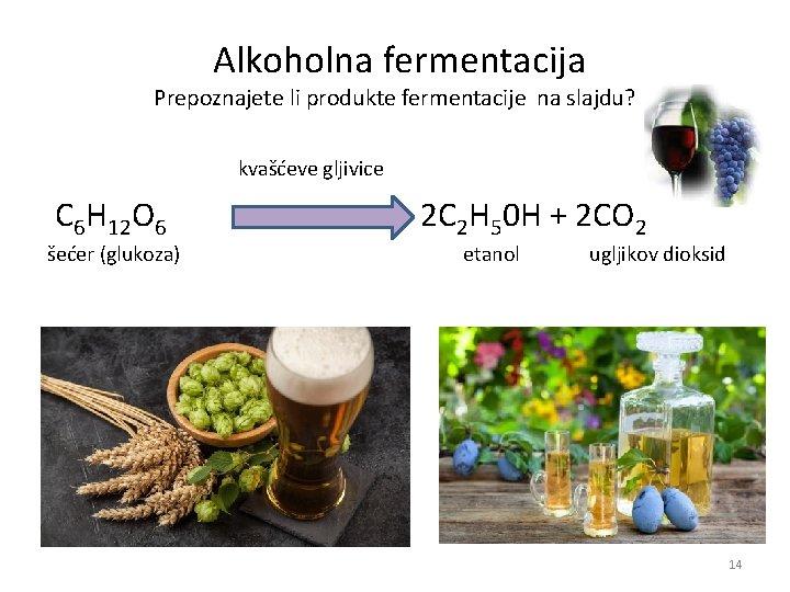 Alkoholna fermentacija Prepoznajete li produkte fermentacije na slajdu? kvašćeve gljivice C 6 H
