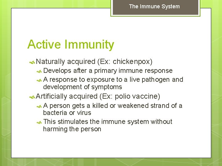 The Immune System Active Immunity Naturally acquired (Ex: chickenpox) Develops after a primary immune