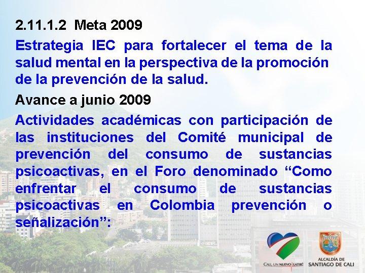2. 11. 1. 2 Meta 2009 Estrategia IEC para fortalecer el tema de la