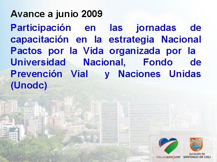 Avance a junio 2009 Participación en las jornadas de capacitación en la estrategia Nacional