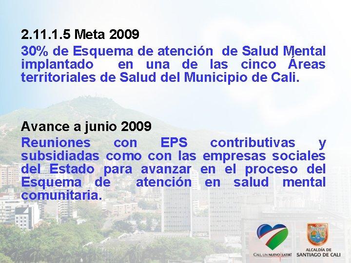 2. 11. 1. 5 Meta 2009 30% de Esquema de atención de Salud Mental