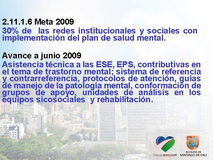 2. 11. 1. 6 Meta 2009 30% de las redes institucionales y sociales con