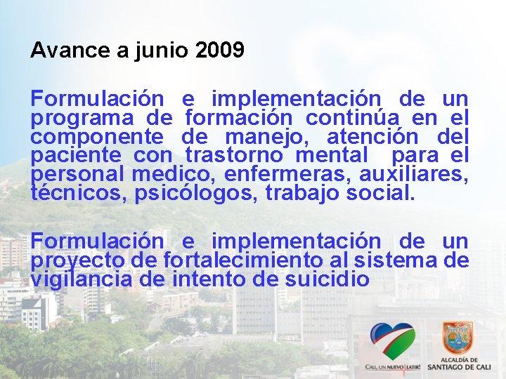 Avance a junio 2009 Formulación e implementación de un programa de formación continúa en