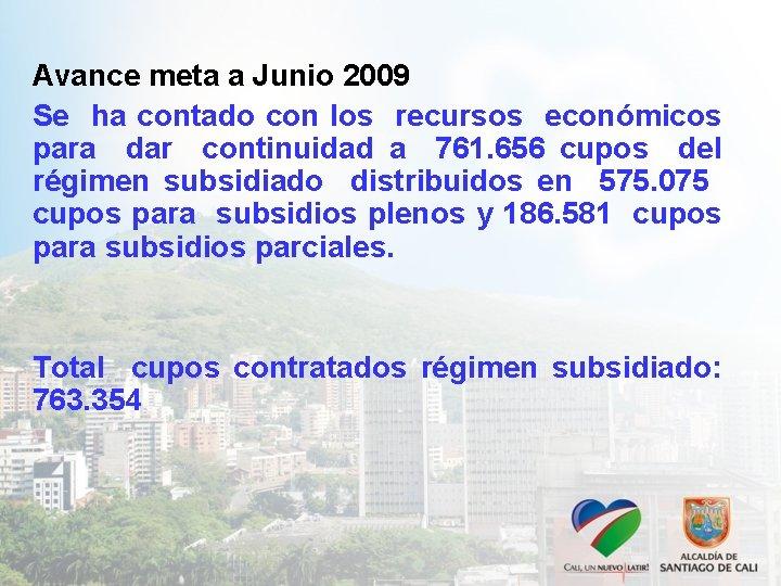 Avance meta a Junio 2009 Se ha contado con los recursos económicos para dar