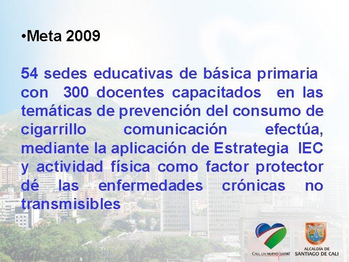 • Meta 2009 54 sedes educativas de básica primaria con 300 docentes capacitados
