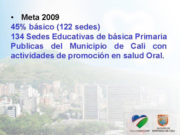 • Meta 2009 45% básico (122 sedes) 134 Sedes Educativas de básica Primaria