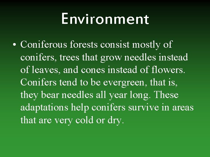 Environment • Coniferous forests consist mostly of conifers, trees that grow needles instead of