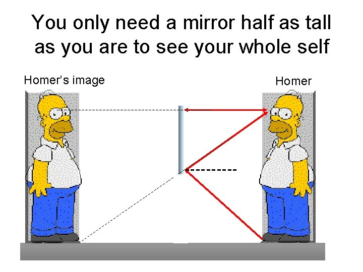 You only need a mirror half as tall as you are to see your