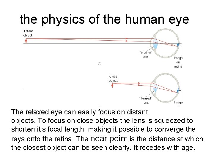 the physics of the human eye The relaxed eye can easily focus on distant