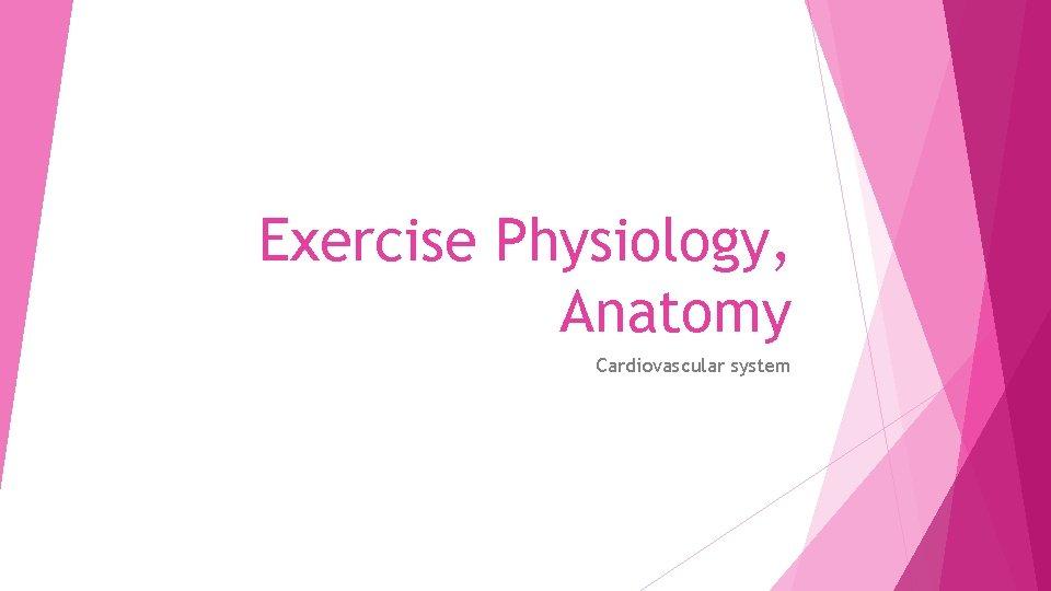 Exercise Physiology, Anatomy Cardiovascular system