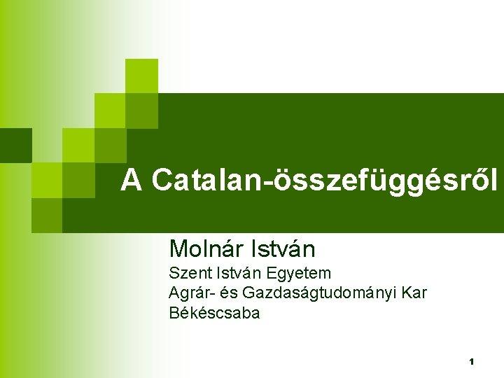 A Catalan-összefüggésről Molnár István Szent István Egyetem Agrár- és Gazdaságtudományi Kar Békéscsaba 1