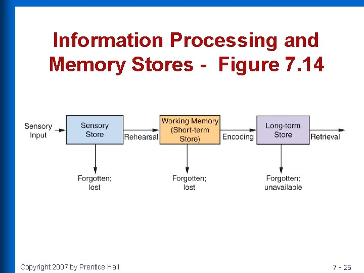 Information Processing and Memory Stores - Figure 7. 14 Copyright 2007 by Prentice Hall