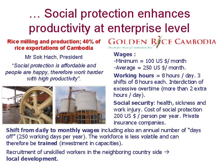 … Social protection enhances productivity at enterprise level Rice milling and production; 40% of
