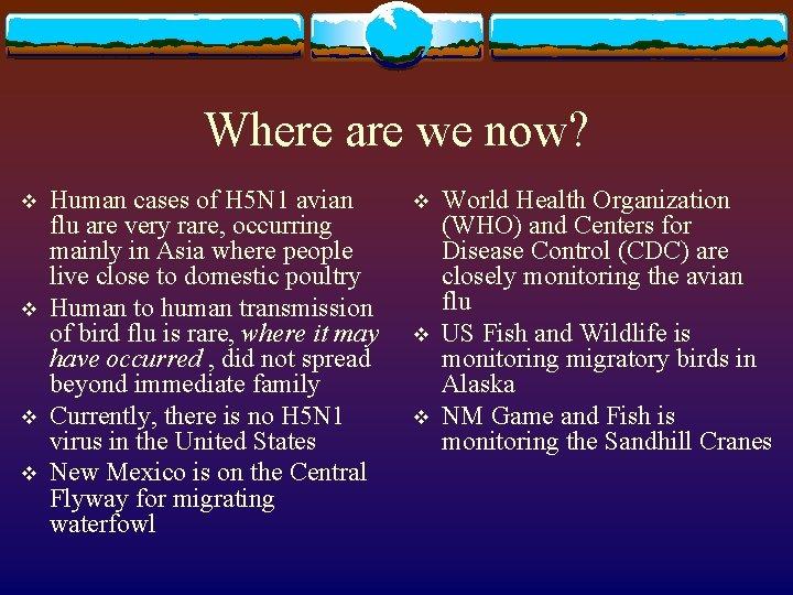 Where are we now? v v Human cases of H 5 N 1 avian