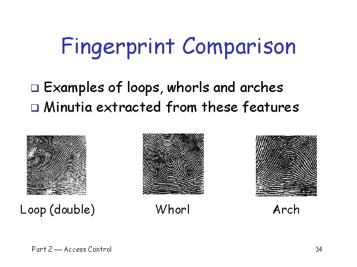 Fingerprint Comparison Examples of loops, whorls and arches q Minutia extracted from these features