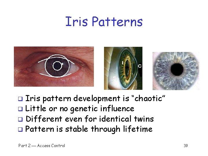 "Iris Patterns Iris pattern development is ""chaotic"" q Little or no genetic influence q"