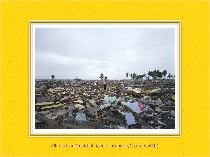Aftermath in Meulaboh (Aceh, Indonésie, 9 janvier 2005)