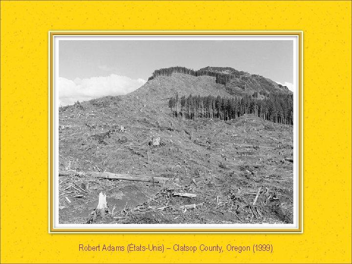 Robert Adams (États-Unis) – Clatsop County, Oregon (1999)