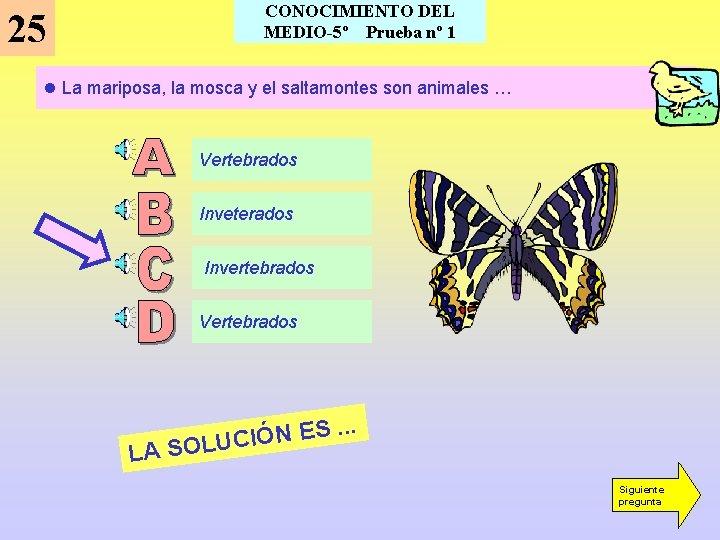 CONOCIMIENTO DEL MEDIO-5º Prueba nº 1 25 l La mariposa, la mosca y el