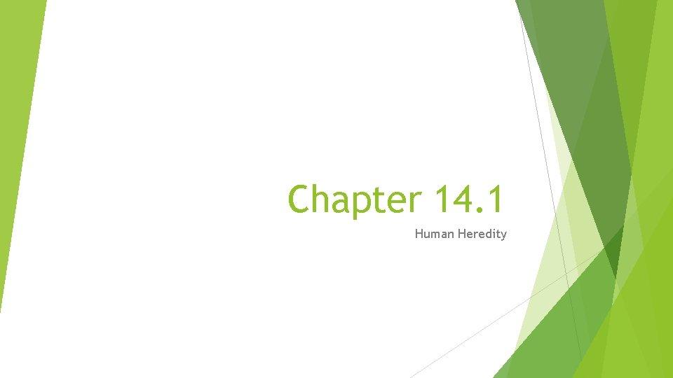 Chapter 14. 1 Human Heredity