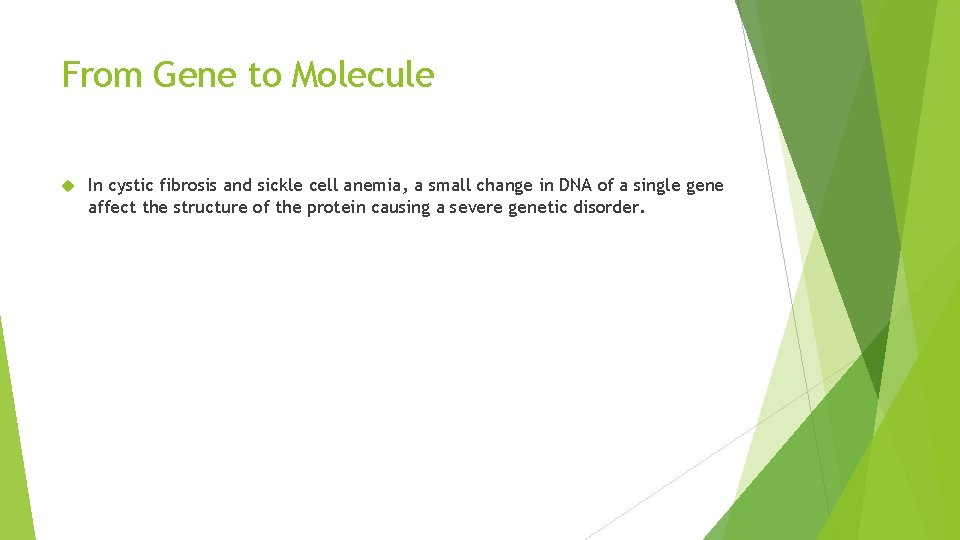 From Gene to Molecule In cystic fibrosis and sickle cell anemia, a small change