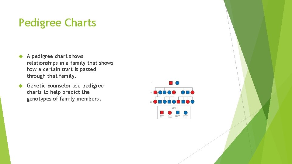 Pedigree Charts A pedigree chart shows relationships in a family that shows how a