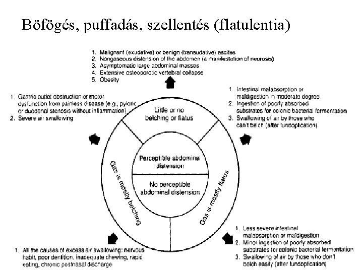 Böfögés, puffadás, szellentés (flatulentia)