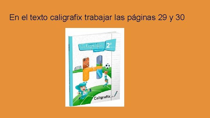 En el texto caligrafix trabajar las páginas 29 y 30