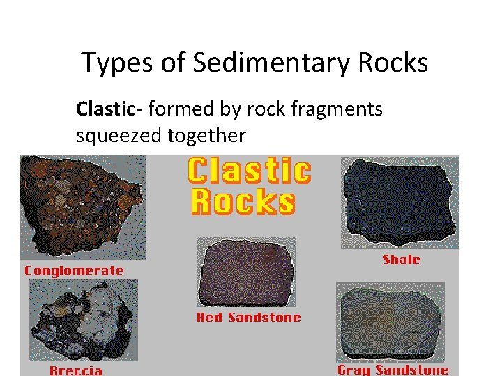 Types of Sedimentary Rocks Clastic- formed by rock fragments squeezed together
