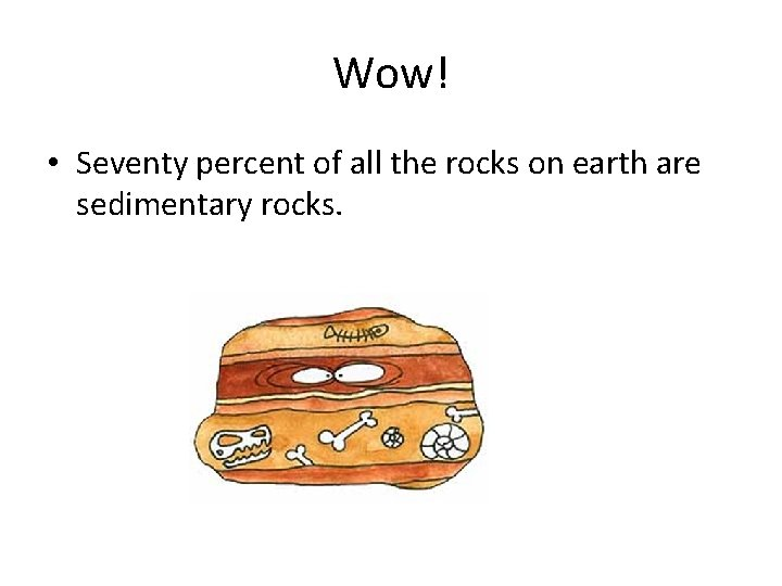 Wow! • Seventy percent of all the rocks on earth are sedimentary rocks.