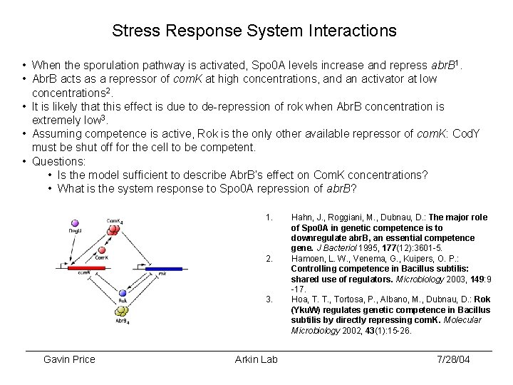 Stress Response System Interactions • When the sporulation pathway is activated, Spo 0 A