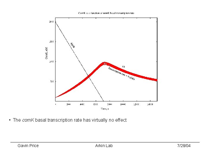• The com. K basal transcription rate has virtually no effect Gavin Price
