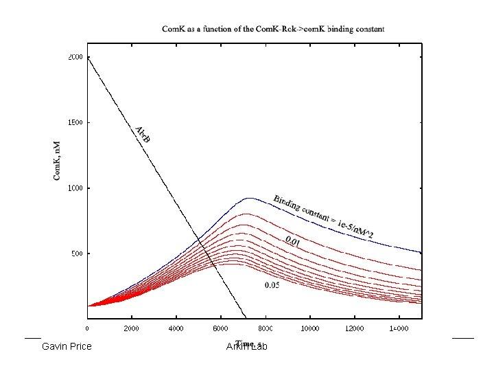 Gavin Price Arkin Lab 7/28/04