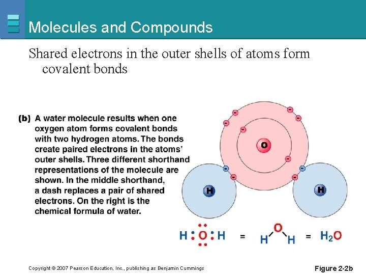 Molecules and Compounds Shared electrons in the outer shells of atoms form covalent bonds