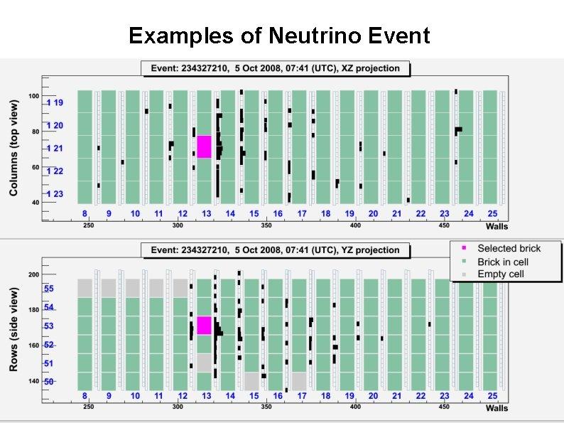Examples of Neutrino Event