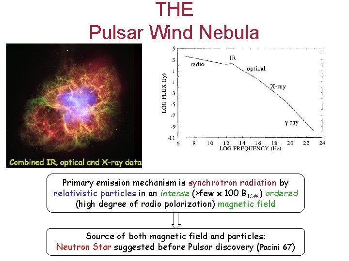 THE Pulsar Wind Nebula Primary emission mechanism is synchrotron radiation by relativistic particles in