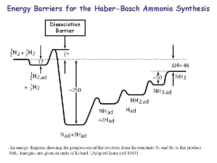 Energy Barriers for the Haber-Bosch Ammonia Synthesis Dissociation Barrier