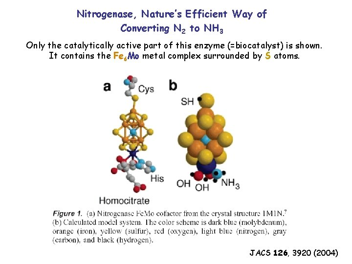 Nitrogenase, Nature's Efficient Way of Converting N 2 to NH 3 Only the catalytically