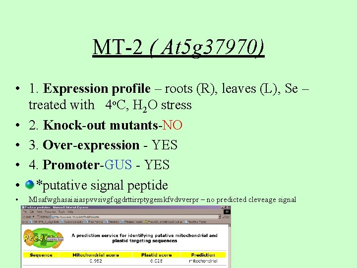 MT-2 ( At 5 g 37970) • 1. Expression profile – roots (R), leaves