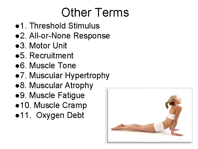 Other Terms ● 1. Threshold Stimulus ● 2. All-or-None Response ● 3. Motor Unit